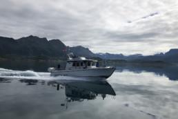 Bedriftstur på båt med Arctic Cruise!