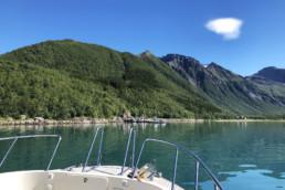 På båttur til Svartisen med Arctic Cruise.