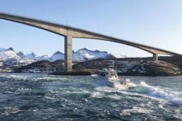 Saltstraumensafari i saltstraumen med Arctic Cruise.